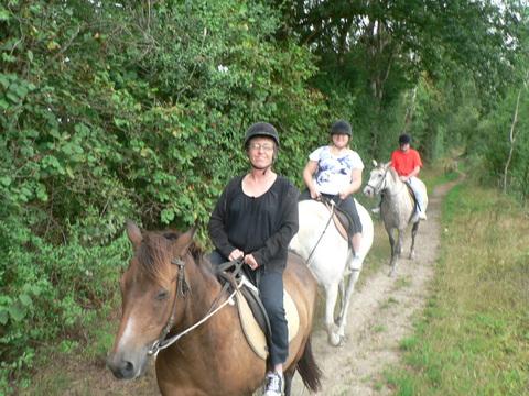 Initiation équitation, une belle ballade...
