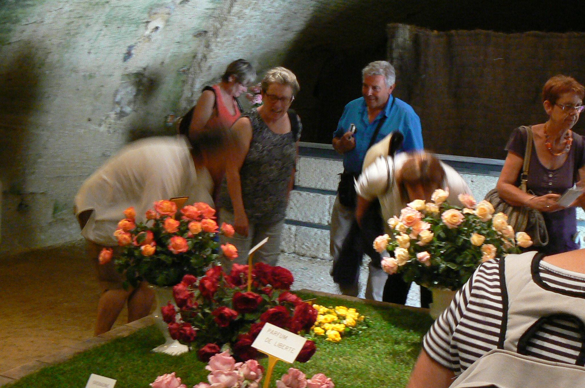 Découverte de la Journée de la Rose, c'est magnifique, romantique et coloré ! sublime...